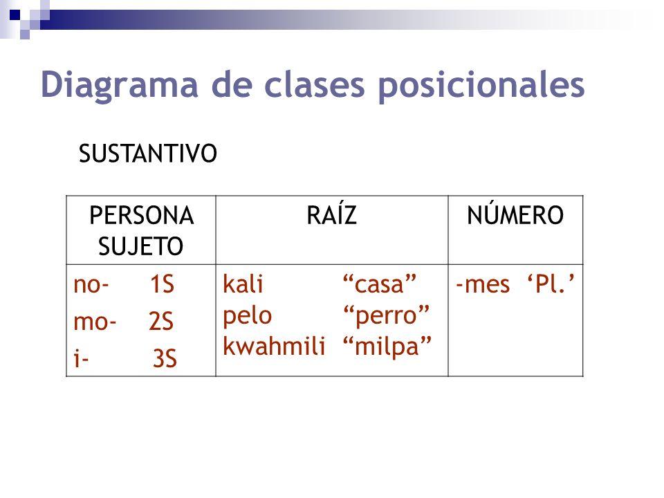 Diagrama de clases posicionales PERSONA SUJETO RAÍZNÚMERO no- 1S mo- 2S i- 3S kali casa pelo perro kwahmili milpa -mes Pl. SUSTANTIVO