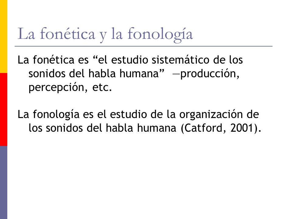 La fonética y la fonología La fonética es el estudio sistemático de los sonidos del habla humana producción, percepción, etc. La fonología es el estud