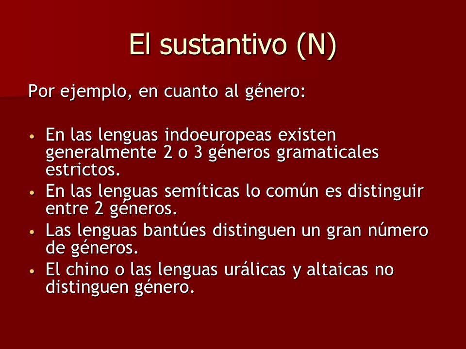 El artículo (o determinante) (D) Son palabras que indican un elemento del conjunto de los sustantivos comunes.