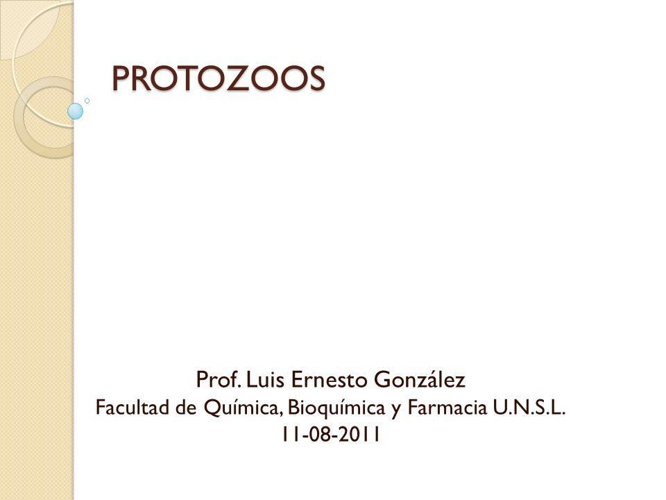 PROTOZOOS Prof. Luis Ernesto González Facultad de Química, Bioquímica y Farmacia U.N.S.L. 11-08-2011