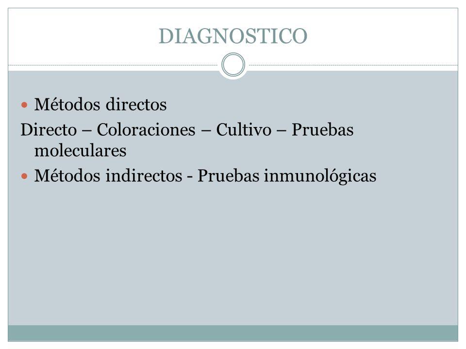 DIAGNOSTICO Métodos directos Directo – Coloraciones – Cultivo – Pruebas moleculares Métodos indirectos - Pruebas inmunológicas