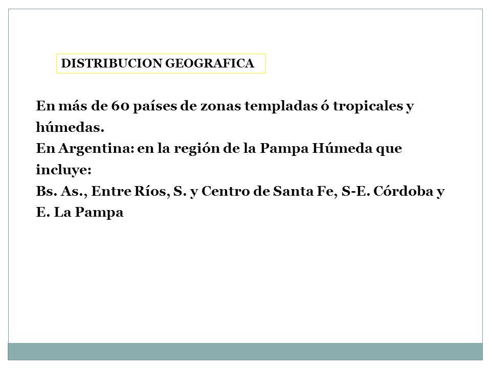 DISTRIBUCION GEOGRAFICA En más de 60 países de zonas templadas ó tropicales y húmedas. En Argentina: en la región de la Pampa Húmeda que incluye: Bs.