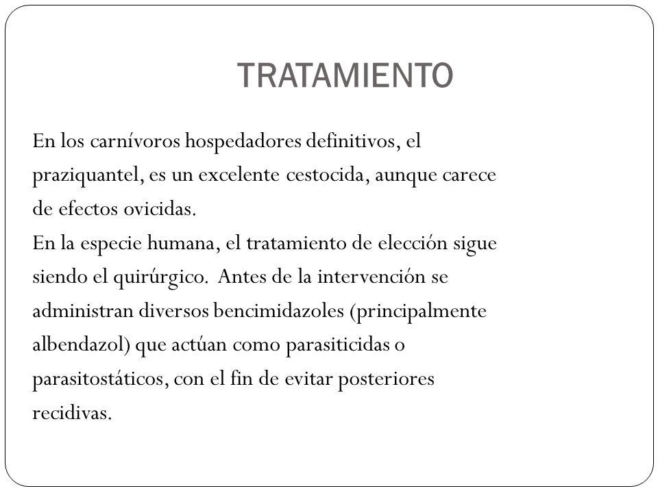 TRATAMIENTO En los carnívoros hospedadores definitivos, el praziquantel, es un excelente cestocida, aunque carece de efectos ovicidas. En la especie h