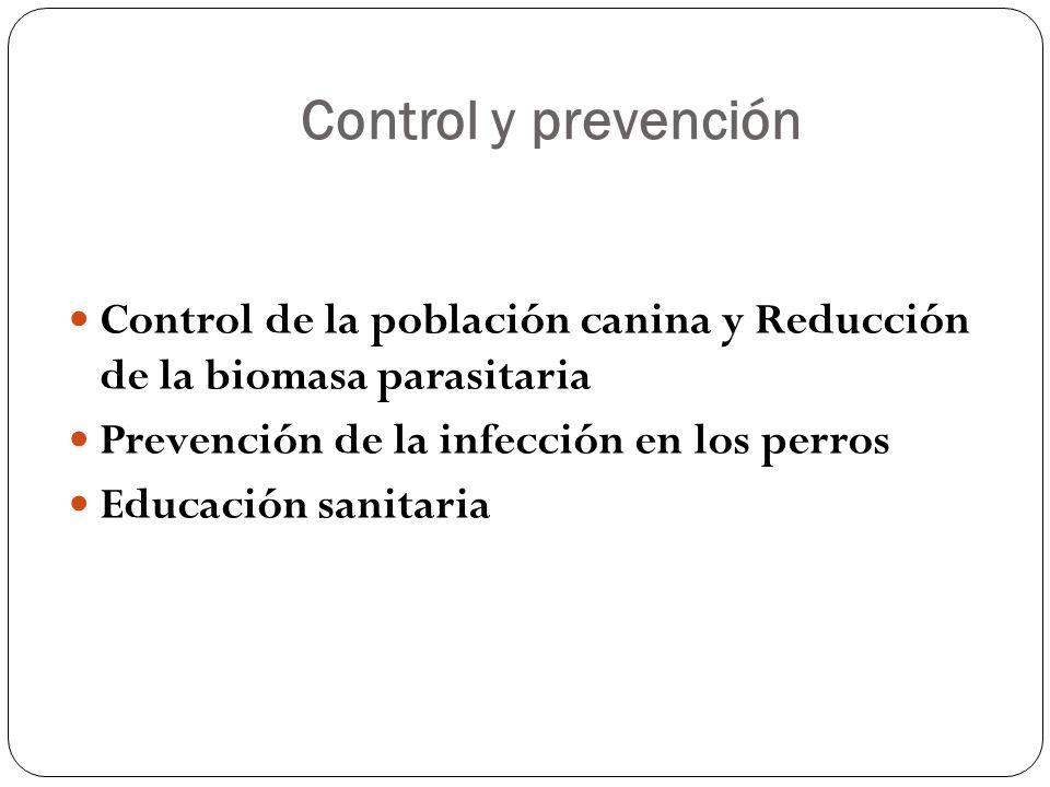Control y prevención Control de la población canina y Reducción de la biomasa parasitaria Prevención de la infección en los perros Educación sanitaria