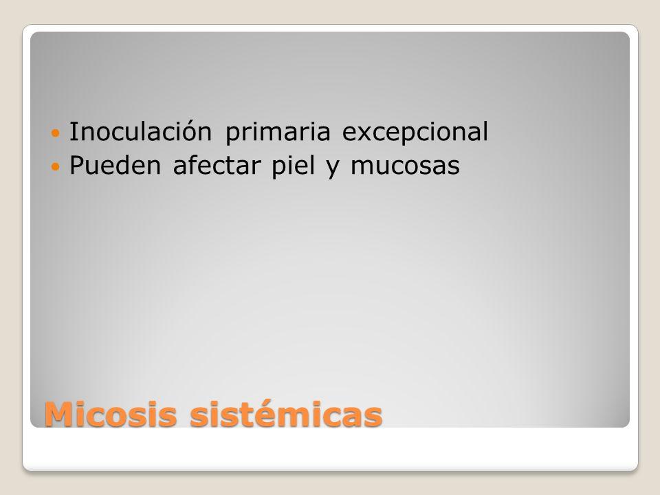Micosis sistémicas Inoculación primaria excepcional Pueden afectar piel y mucosas