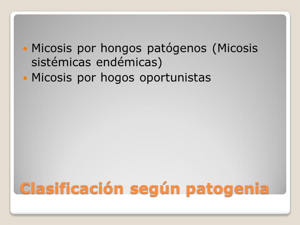 Clasificación según patogenia Micosis por hongos patógenos (Micosis sistémicas endémicas) Micosis por hogos oportunistas