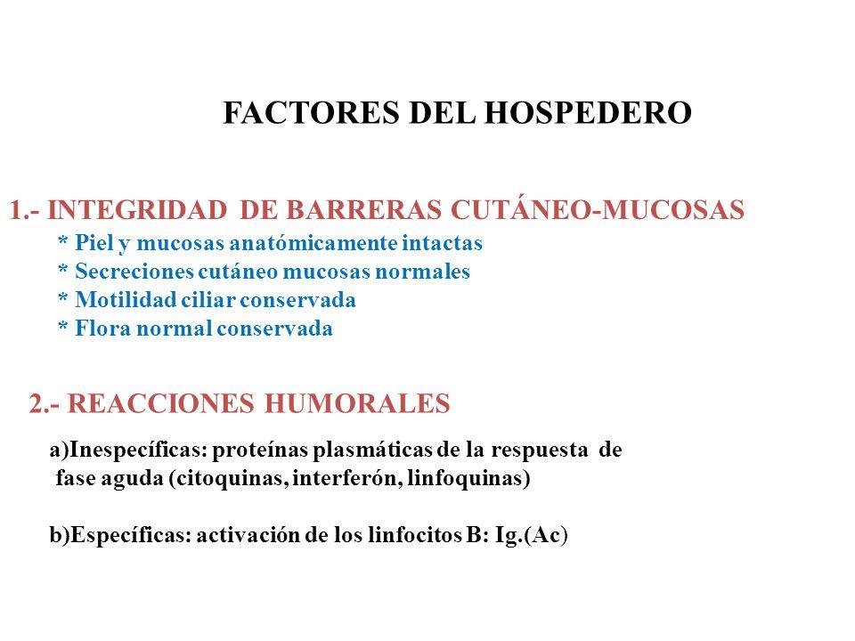 FACTORES DEL HOSPEDERO 1.- INTEGRIDAD DE BARRERAS CUTÁNEO-MUCOSAS * Piel y mucosas anatómicamente intactas * Secreciones cutáneo mucosas normales * Mo