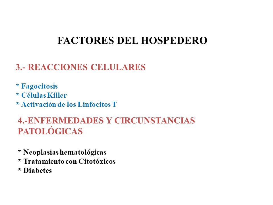 FACTORES DEL HOSPEDERO 3.- REACCIONES CELULARES * Fagocitosis * Células Killer * Activación de los Linfocitos T 4.-ENFERMEDADES Y CIRCUNSTANCIAS PATOL