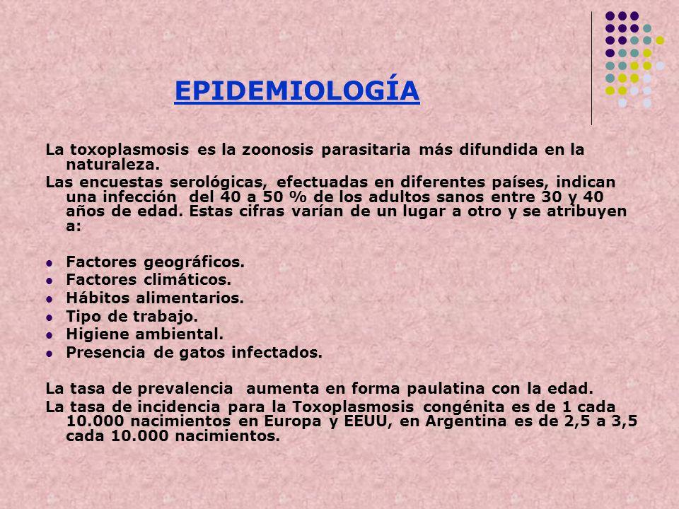 EPIDEMIOLOGÍA La toxoplasmosis es la zoonosis parasitaria más difundida en la naturaleza. Las encuestas serológicas, efectuadas en diferentes países,