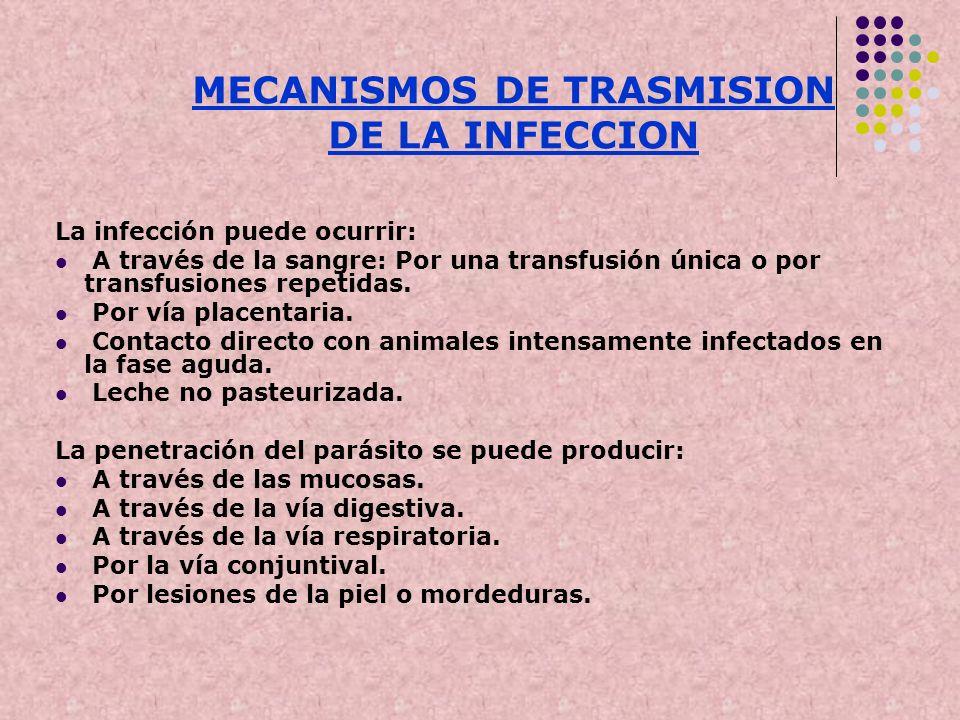 MECANISMOS DE TRASMISION DE LA INFECCION La infección puede ocurrir: A través de la sangre: Por una transfusión única o por transfusiones repetidas. P
