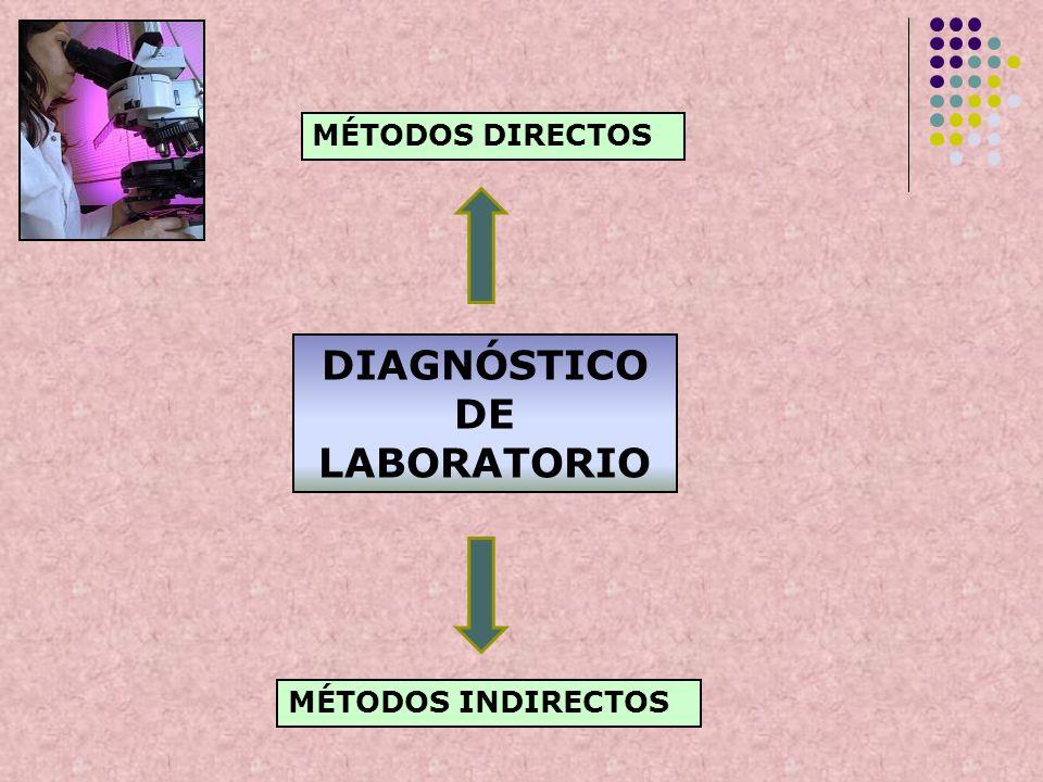 DIAGNÓSTICO DE LABORATORIO MÉTODOS DIRECTOS MÉTODOS INDIRECTOS