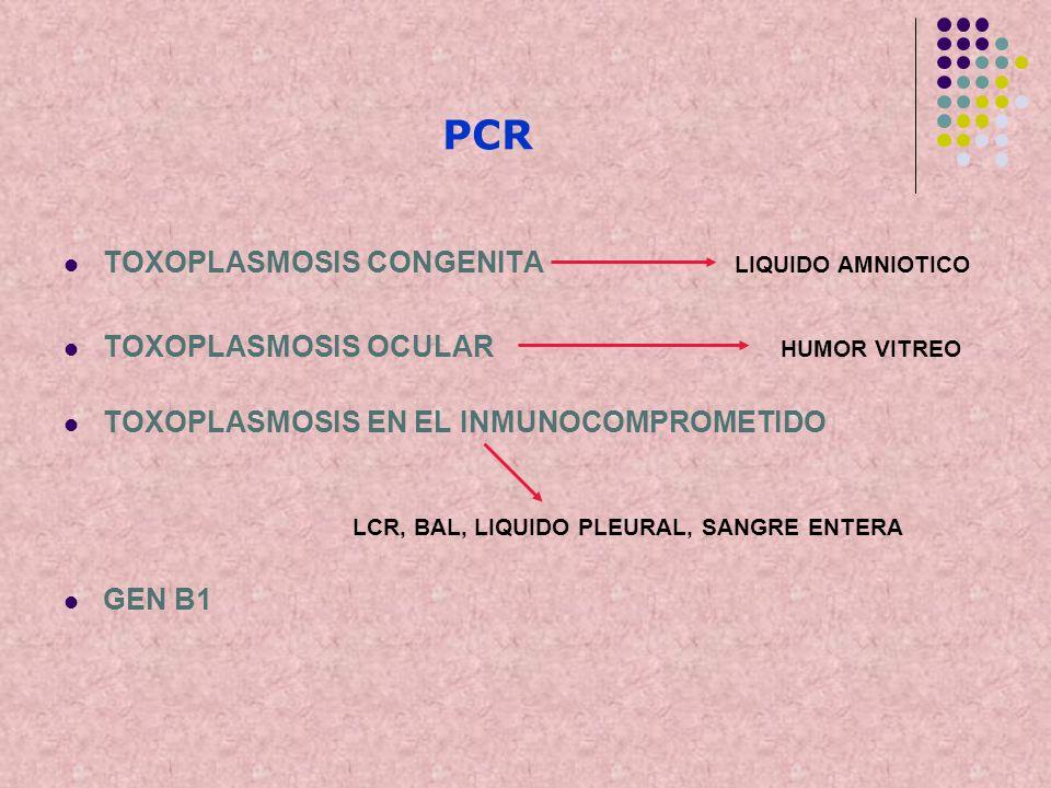 PCR TOXOPLASMOSIS CONGENITA LIQUIDO AMNIOTICO TOXOPLASMOSIS OCULAR HUMOR VITREO TOXOPLASMOSIS EN EL INMUNOCOMPROMETIDO LCR, BAL, LIQUIDO PLEURAL, SANG