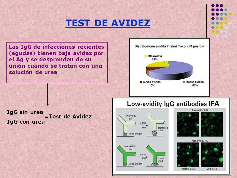 TEST DE AVIDEZ Las IgG de infecciones recientes (agudas) tienen baja avidez por el Ag y se desprenden de su unión cuando se tratan con una solución de