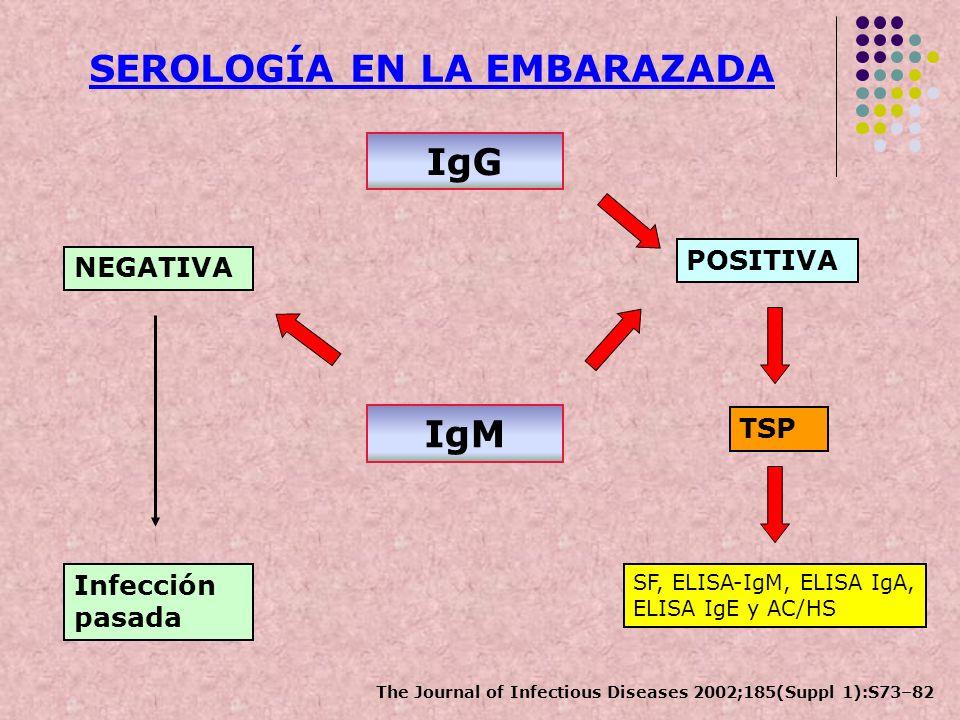 IgM NEGATIVA POSITIVA Infección pasada IgG TSP SF, ELISA-IgM, ELISA IgA, ELISA IgE y AC/HS SEROLOGÍA EN LA EMBARAZADA The Journal of Infectious Diseas