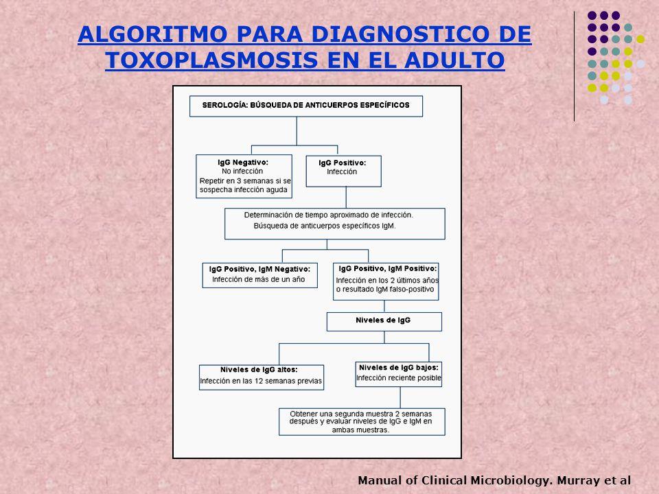 ALGORITMO PARA DIAGNOSTICO DE TOXOPLASMOSIS EN EL ADULTO Manual of Clinical Microbiology. Murray et al