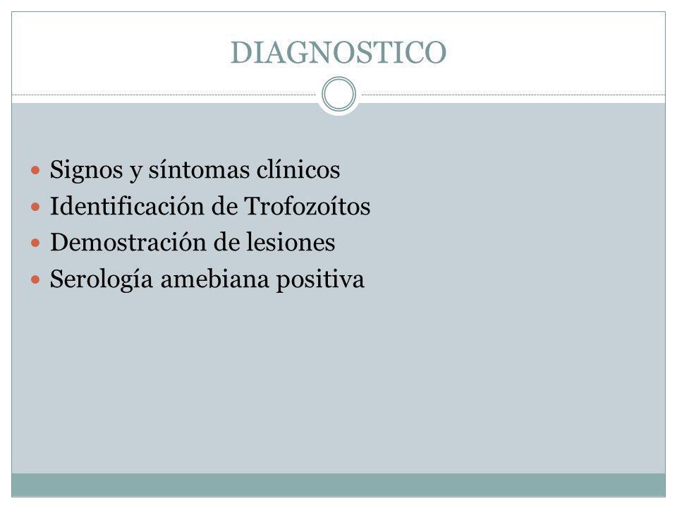 DIAGNOSTICO Signos y síntomas clínicos Identificación de Trofozoítos Demostración de lesiones Serología amebiana positiva