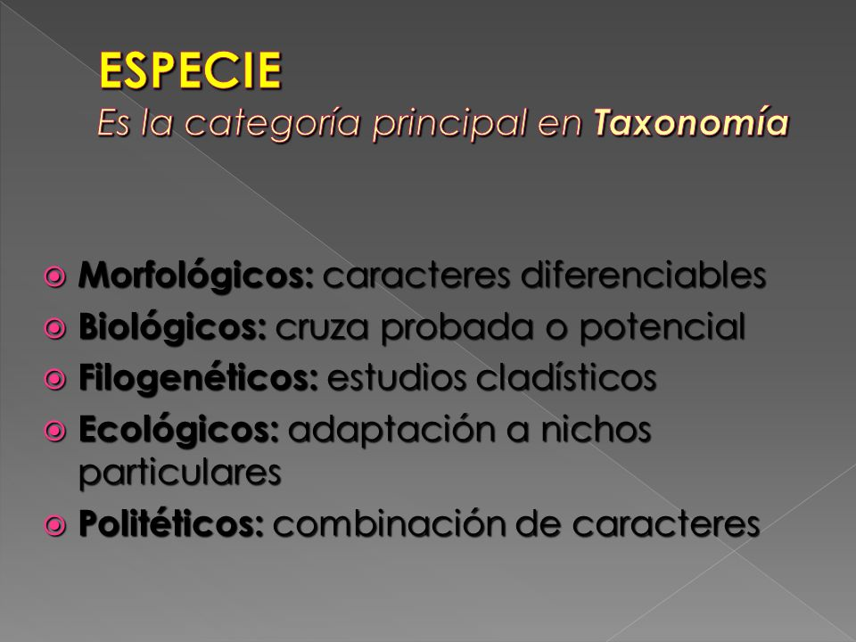 Morfológicos: caracteres diferenciables Morfológicos: caracteres diferenciables Biológicos: cruza probada o potencial Biológicos: cruza probada o pote