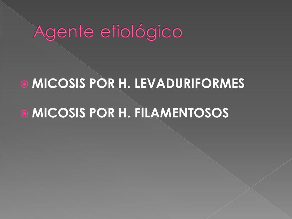 MICOSIS POR H. LEVADURIFORMES MICOSIS POR H. FILAMENTOSOS