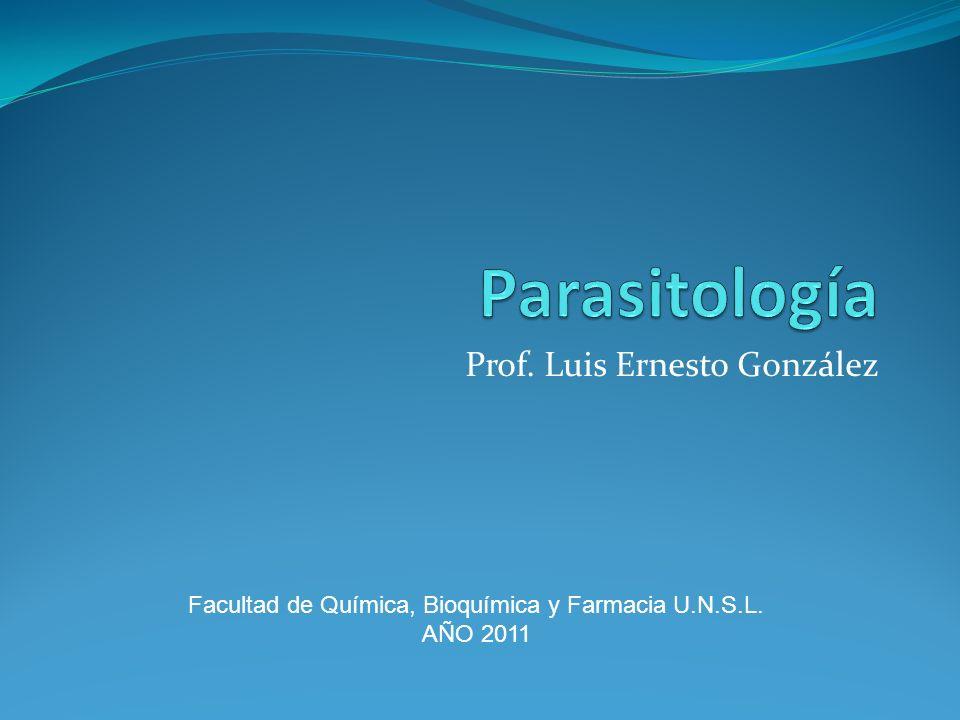 Prof. Luis Ernesto González Facultad de Química, Bioquímica y Farmacia U.N.S.L. AÑO 2011