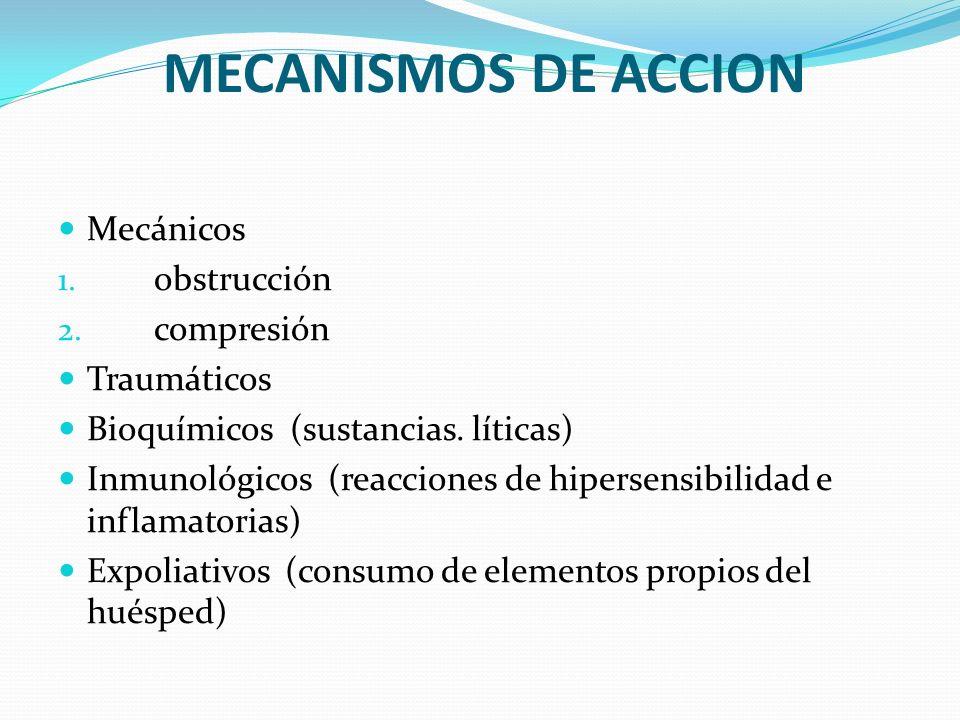 MECANISMOS DE ACCION Mecánicos 1. obstrucción 2. compresión Traumáticos Bioquímicos (sustancias. líticas) Inmunológicos (reacciones de hipersensibilid