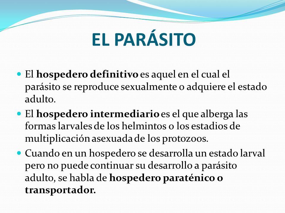 EL PARÁSITO El hospedero definitivo es aquel en el cual el parásito se reproduce sexualmente o adquiere el estado adulto. El hospedero intermediario e
