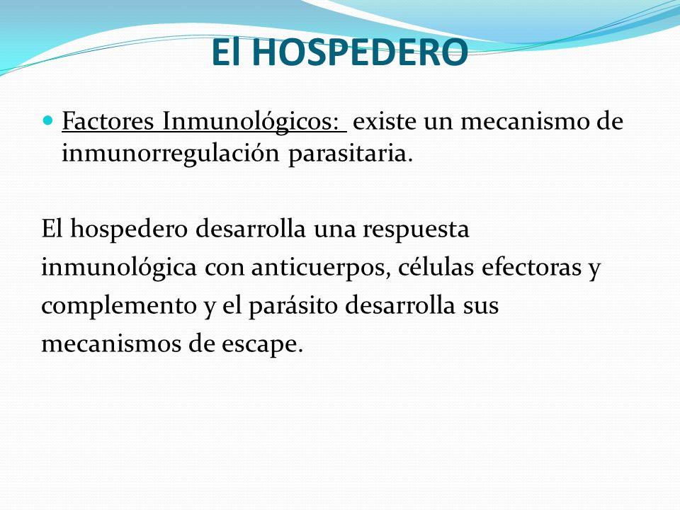 El HOSPEDERO Factores Inmunológicos: existe un mecanismo de inmunorregulación parasitaria. El hospedero desarrolla una respuesta inmunológica con anti