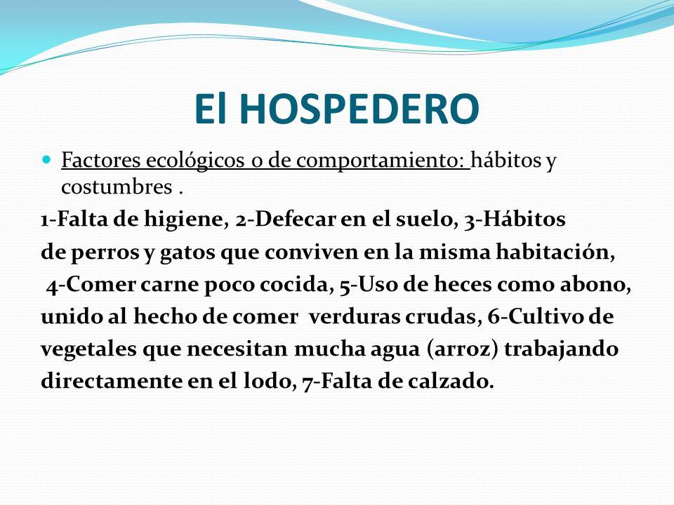 El HOSPEDERO Factores ecológicos o de comportamiento: hábitos y costumbres. 1-Falta de higiene, 2-Defecar en el suelo, 3-Hábitos de perros y gatos que