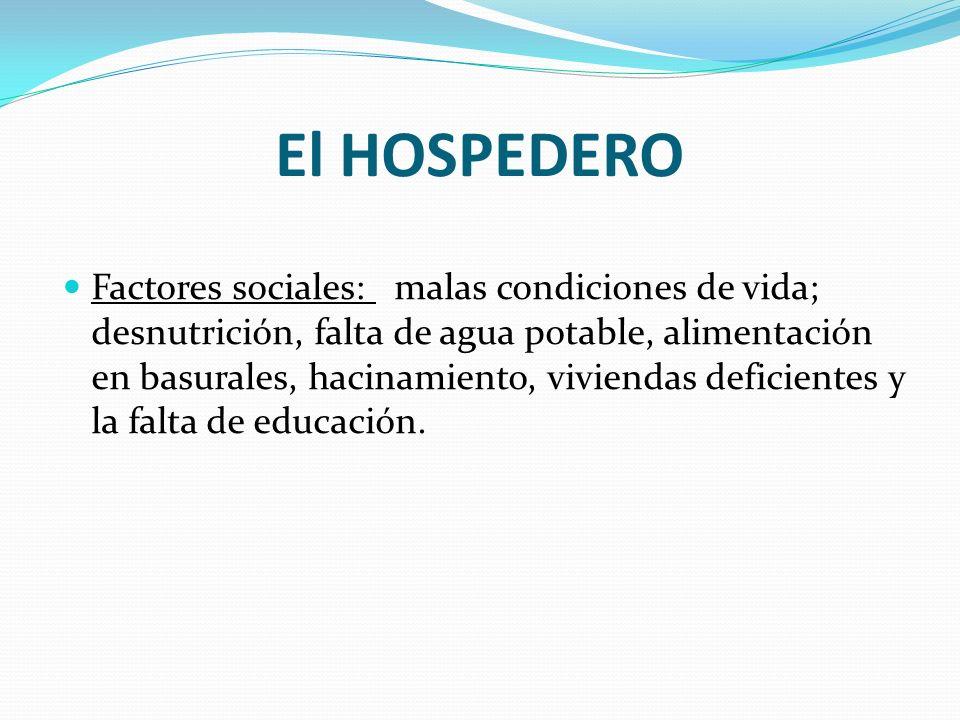 El HOSPEDERO Factores sociales: malas condiciones de vida; desnutrición, falta de agua potable, alimentación en basurales, hacinamiento, viviendas def
