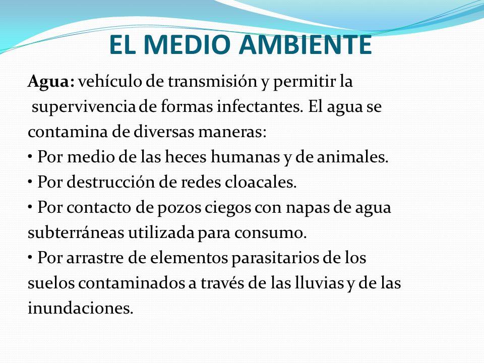 EL MEDIO AMBIENTE Agua: vehículo de transmisión y permitir la supervivencia de formas infectantes. El agua se contamina de diversas maneras: Por medio