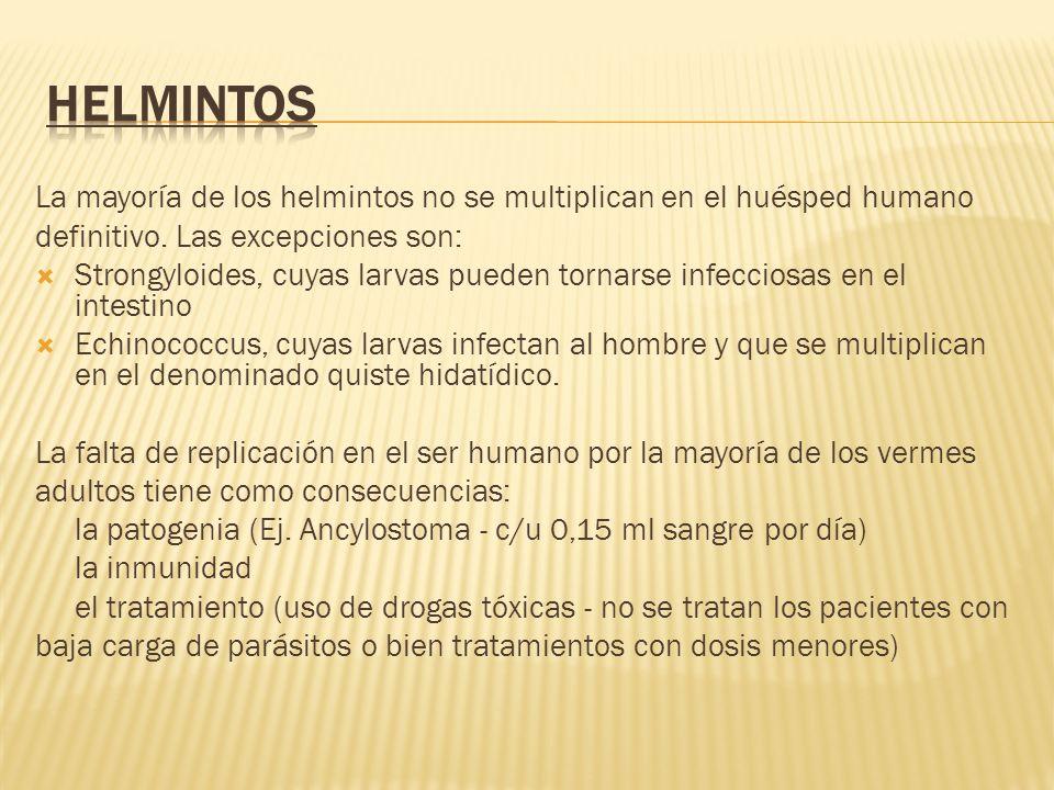 La mayoría de los helmintos no se multiplican en el huésped humano definitivo. Las excepciones son: Strongyloides, cuyas larvas pueden tornarse infecc