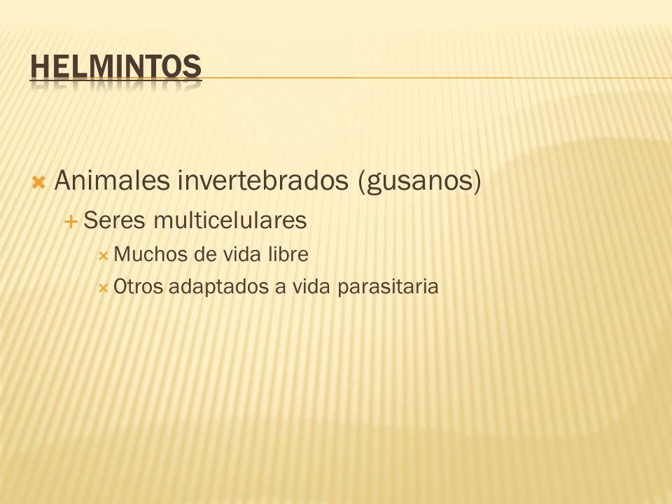 La esquistosomiosis por S.