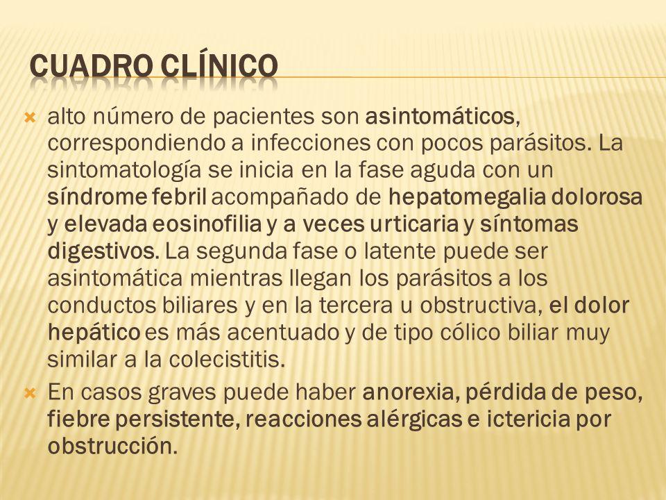 alto número de pacientes son asintomáticos, correspondiendo a infecciones con pocos parásitos. La sintomatología se inicia en la fase aguda con un sín