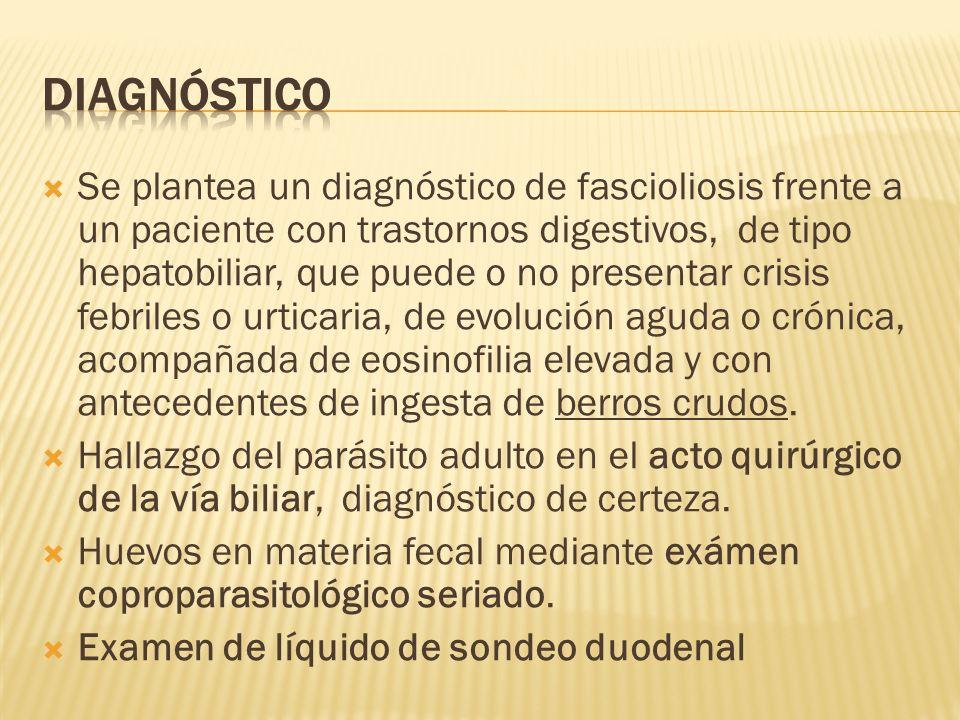 Se plantea un diagnóstico de fascioliosis frente a un paciente con trastornos digestivos, de tipo hepatobiliar, que puede o no presentar crisis febril