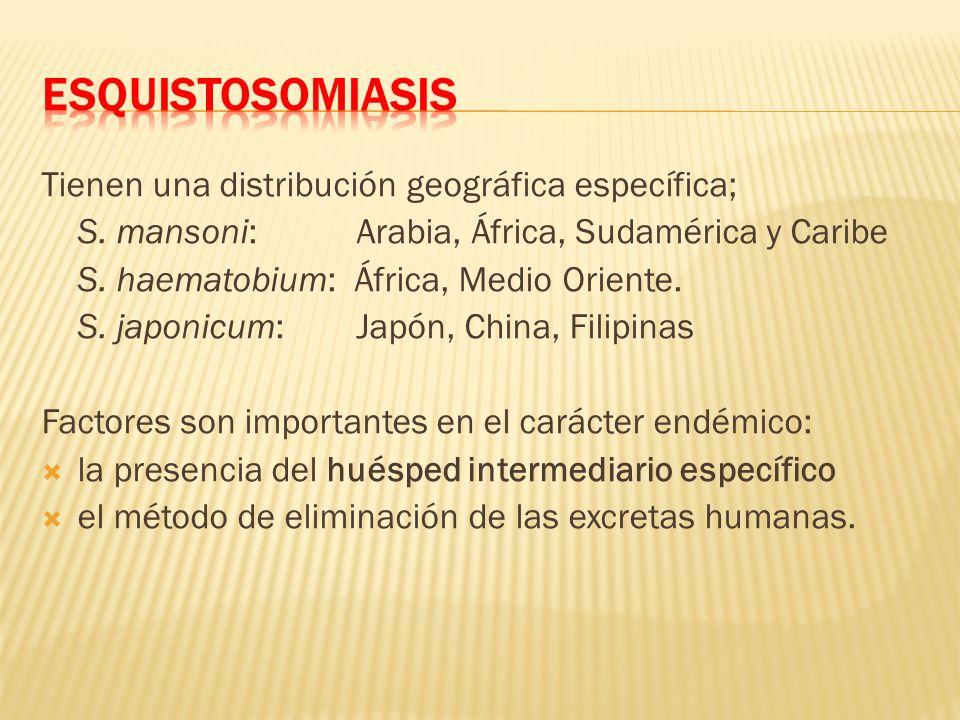 Tienen una distribución geográfica específica; S. mansoni: Arabia, África, Sudamérica y Caribe S. haematobium: África, Medio Oriente. S. japonicum: Ja