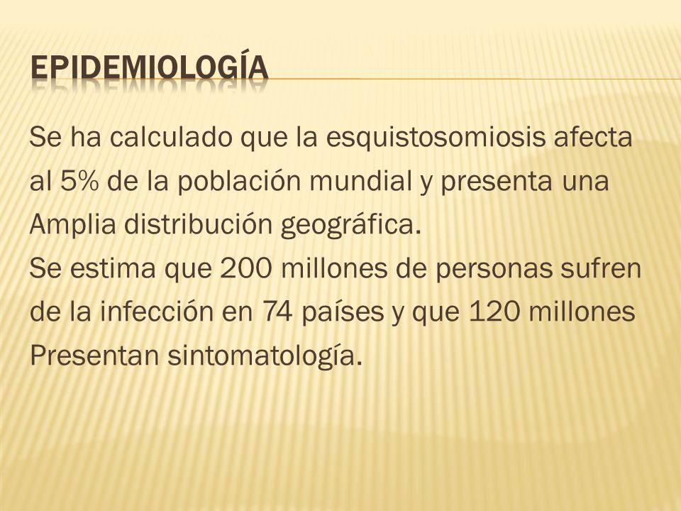 Se ha calculado que la esquistosomiosis afecta al 5% de la población mundial y presenta una Amplia distribución geográfica. Se estima que 200 millones