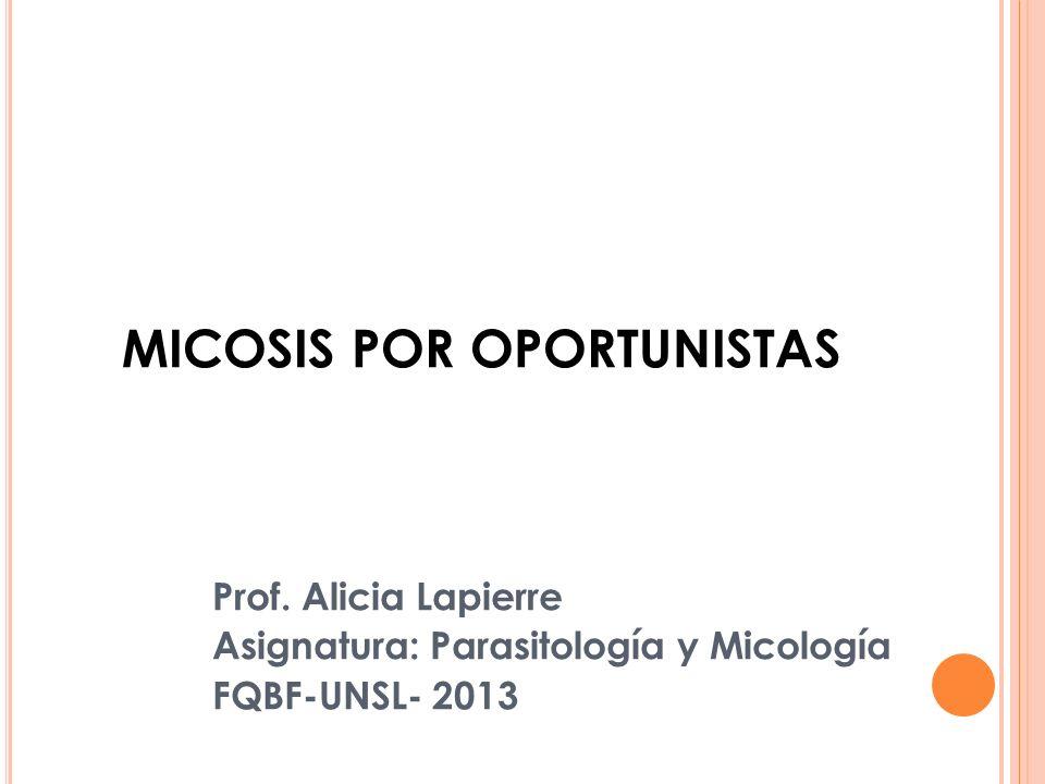 MICOSIS POR OPORTUNISTAS Prof. Alicia Lapierre Asignatura: Parasitología y Micología FQBF-UNSL- 2013