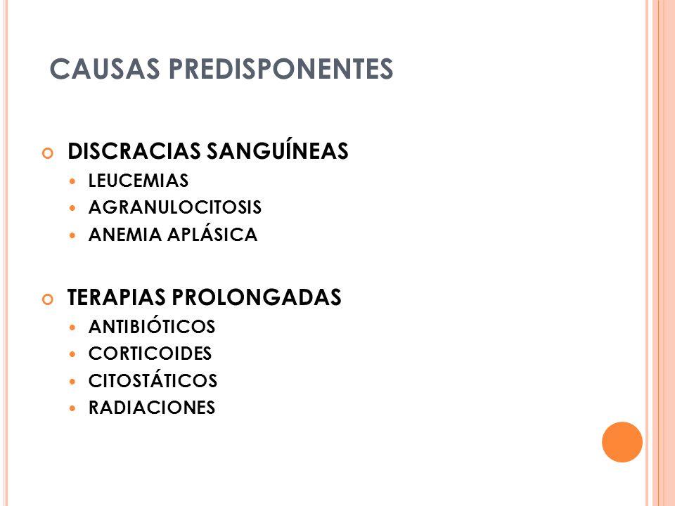 CAUSAS PREDISPONENTES DISCRACIAS SANGUÍNEAS LEUCEMIAS AGRANULOCITOSIS ANEMIA APLÁSICA TERAPIAS PROLONGADAS ANTIBIÓTICOS CORTICOIDES CITOSTÁTICOS RADIACIONES