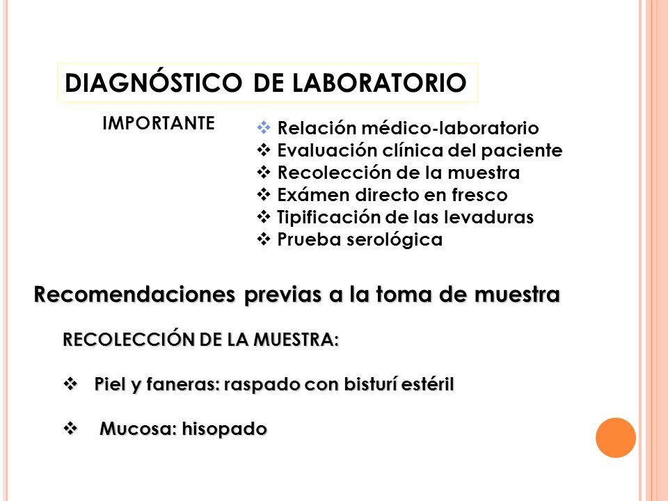 DIAGNÓSTICO DE LABORATORIO IMPORTANTE Relación médico-laboratorio Evaluación clínica del paciente Recolección de la muestra Exámen directo en fresco T
