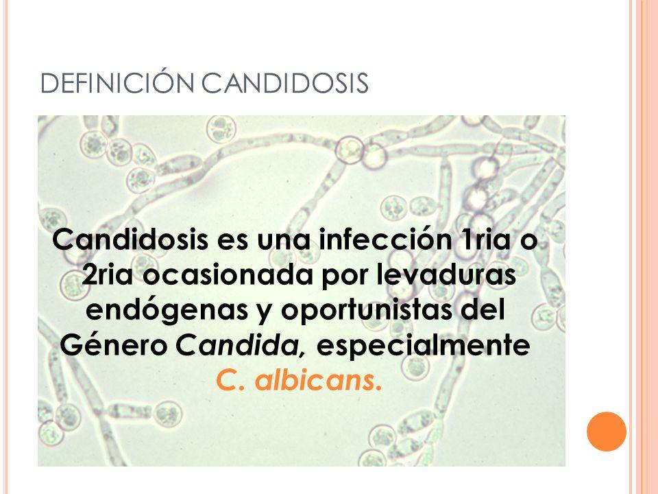 DEFINICIÓN CANDIDOSIS Candidosis es una infección 1ria o 2ria ocasionada por levaduras endógenas y oportunistas del Género Candida, especialmente C.