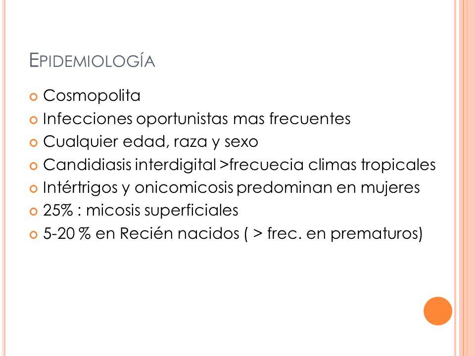 E PIDEMIOLOGÍA Cosmopolita Infecciones oportunistas mas frecuentes Cualquier edad, raza y sexo Candidiasis interdigital >frecuecia climas tropicales Intértrigos y onicomicosis predominan en mujeres 25% : micosis superficiales 5-20 % en Recién nacidos ( > frec.