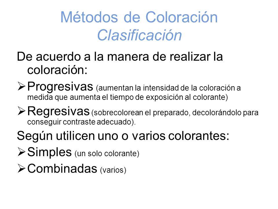 Métodos de Coloración Clasificación De acuerdo a la manera de realizar la coloración: Progresivas (aumentan la intensidad de la coloración a medida qu