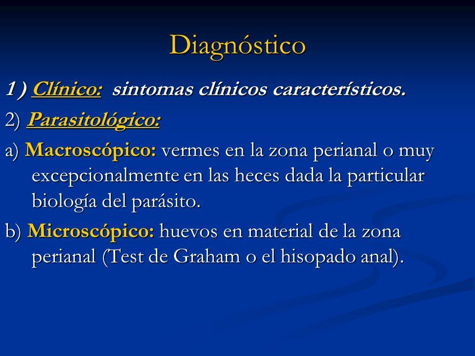 Diagnóstico 1 ) Clínico: sintomas clínicos característicos. 2) Parasitológico: a) Macroscópico: vermes en la zona perianal o muy excepcionalmente en l