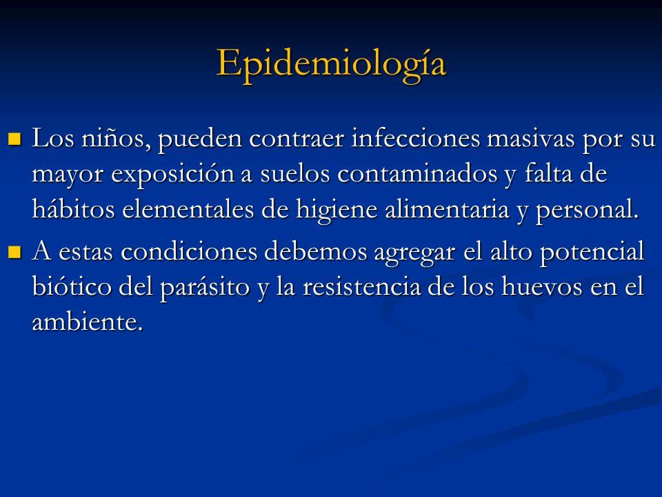 Epidemiología Los niños, pueden contraer infecciones masivas por su mayor exposición a suelos contaminados y falta de hábitos elementales de higiene a