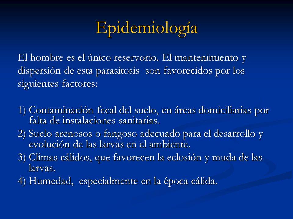 Epidemiología El hombre es el único reservorio. El mantenimiento y dispersión de esta parasitosis son favorecidos por los siguientes factores: 1) Cont