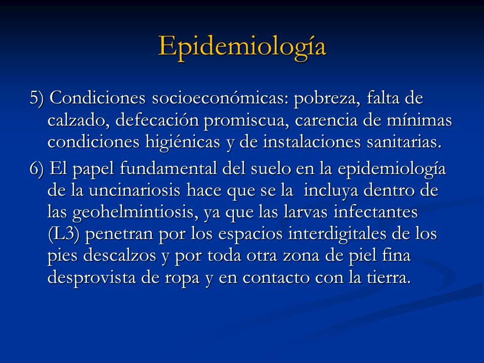 Epidemiología 5) Condiciones socioeconómicas: pobreza, falta de calzado, defecación promiscua, carencia de mínimas condiciones higiénicas y de instala