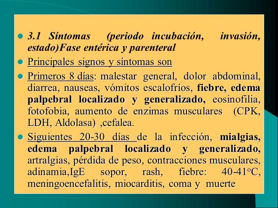3.1 Síntomas (periodo incubación, invasión, estado)Fase entérica y parenteral Principales signos y síntomas son Principales signos y síntomas son Prim