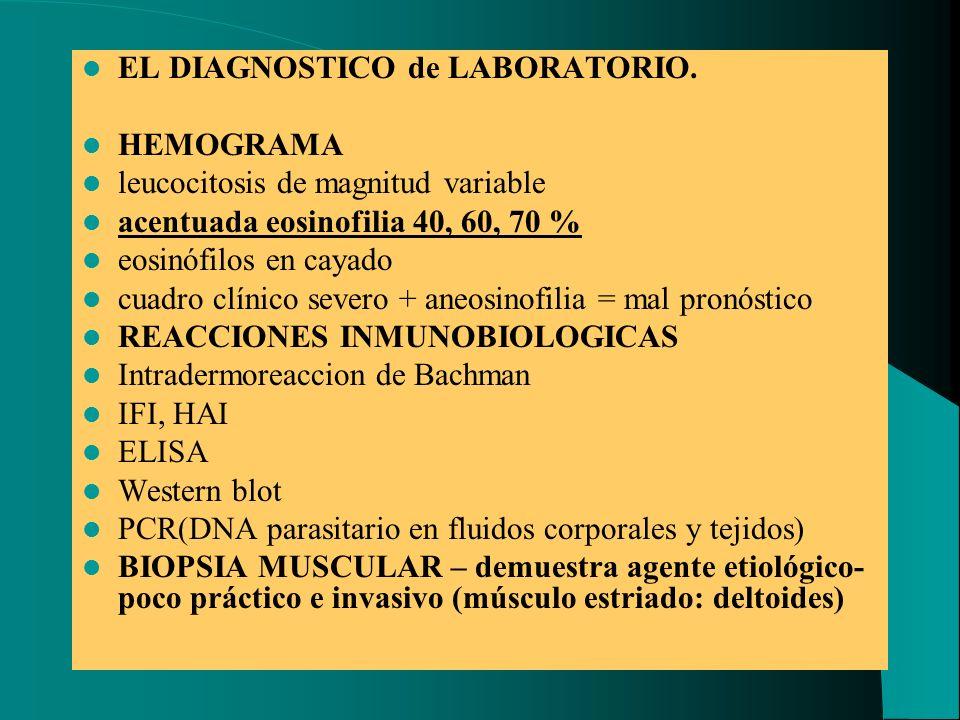 EL DIAGNOSTICO de LABORATORIO. HEMOGRAMA leucocitosis de magnitud variable acentuada eosinofilia 40, 60, 70 % eosinófilos en cayado cuadro clínico sev