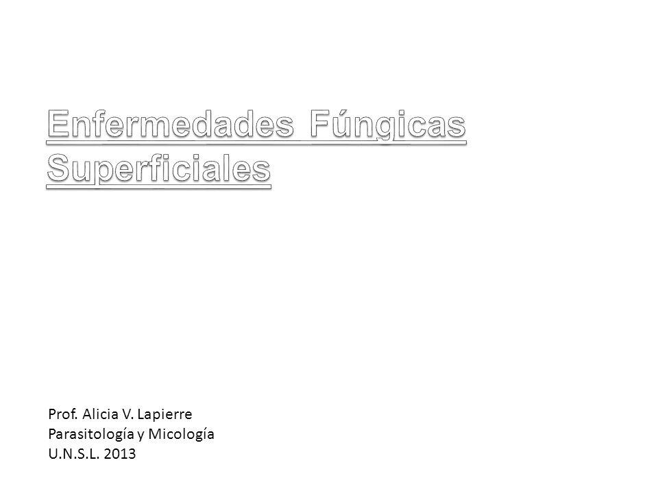 Prof. Alicia V. Lapierre Parasitología y Micología U.N.S.L. 2013