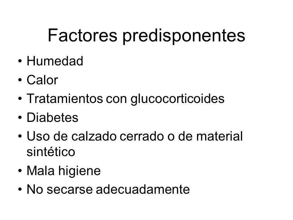 Factores predisponentes Humedad Calor Tratamientos con glucocorticoides Diabetes Uso de calzado cerrado o de material sintético Mala higiene No secars