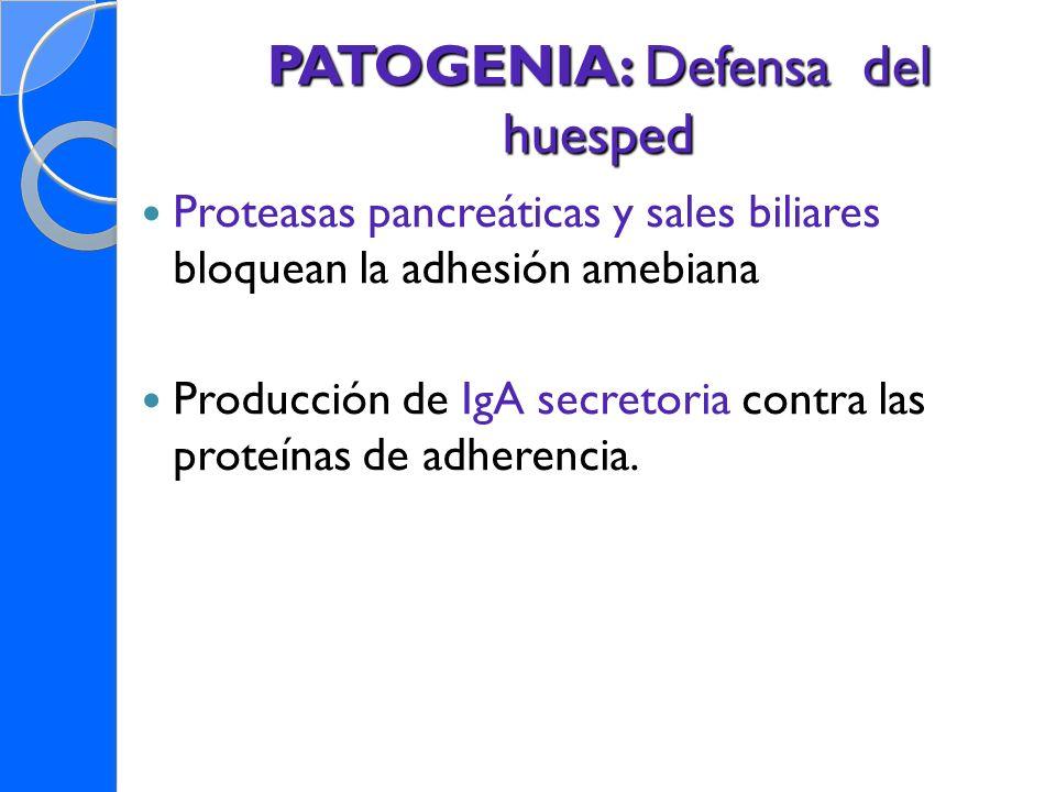 PATOGENIA: Defensa del huesped Proteasas pancreáticas y sales biliares bloquean la adhesión amebiana Producción de IgA secretoria contra las proteínas